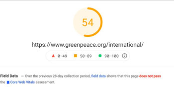 Greenpeace's mobile pagespeed insights score