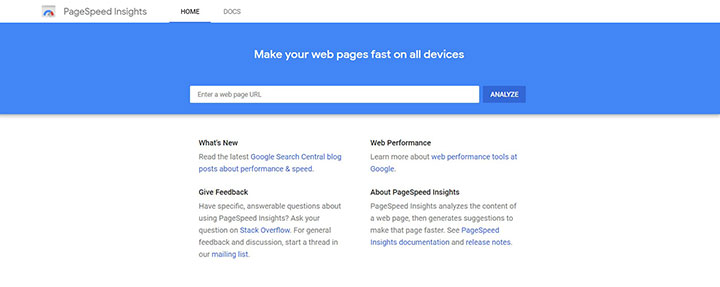 Google's pagespeed insights home page